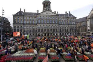 Как уехать из россии жить в недерланды